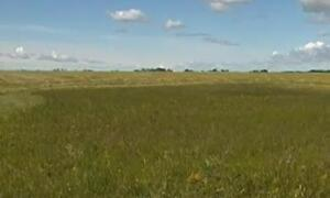 (Discount) 720 acres of land (RM Insinger No 275) for rent (leas