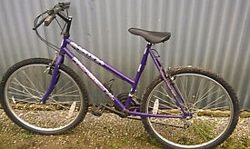Ladies Professional MARTINA Mountain Bike In Very Good Condition