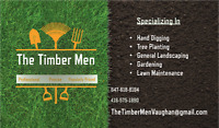 Professional Landscaping, AFFORDABLE PRICE