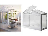 IKEA Mini Greenhouse