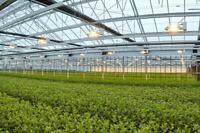 Indoor and outdoor gardening supplies