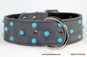 LEATHER COLLARS W/TURQUOISE RIVETS