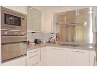 Stunning 1 bedroom apartment in Royal Victoria Docks part dss acceptable with guarantor