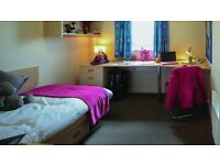 *UCFB ETIHAD STUDENTS ROOM AVAILABLE TO RENT @ LIBERTY STUDENT ACCOMMODATION, MANCHESTER*