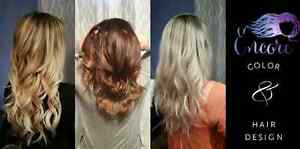 Premium Hair Extensions and Cutting/Coloring/Styling Services Edmonton Edmonton Area image 6
