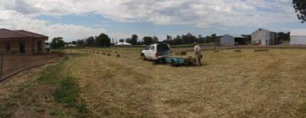 10 ac Harvey Organics farm with 4yr 3-4x2 b/t and new huge shed Harvey Harvey Area Preview