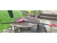 Long reach hedge Pole trimmer