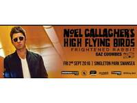 Two tickets noel Gallagher high flying birds Swansea plus supports Gaz Coombes etc