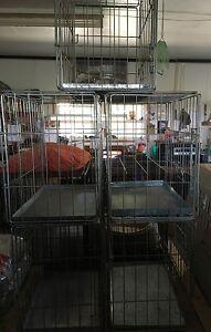smalll dog crates