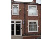Two bedroom ground floor flat swalwell £425pcm