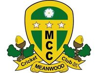 Meanwood Cricket Club Is Looking For New Players