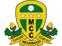 Meanwood Cricket Club (North West Leeds) are looking for players