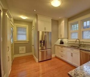 Roommate Wanted - Charming Character Home Near Downtown Core Kitchener / Waterloo Kitchener Area image 4
