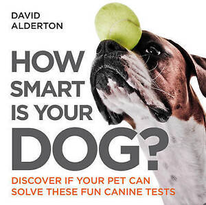 How Smart is Your Dog Discover If Your Pet Can Solve These Fun Canine Tests - <span itemprop=availableAtOrFrom>Bourne, United Kingdom</span> - Items must be returned in new condition, still sealed where applicable. Full policy detailed on www.examots.co.uk Most purchases from business sellers are protected by the Consumer Contrac - Bourne, United Kingdom