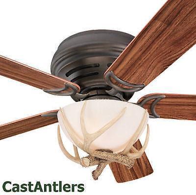 Antler Ceiling Fan Ebay