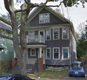 In search of a summer sublet