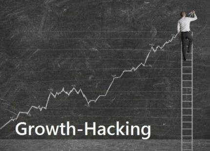 (Growth Hacking ) Over 300 hyper-targeted position 1 rankings