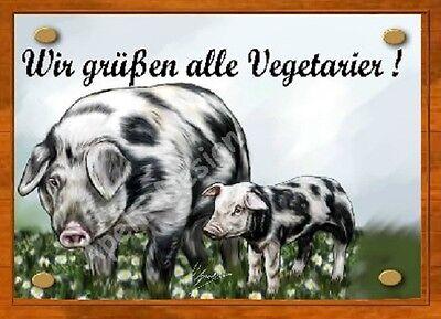 Schwein / Bentheimer Landschwein / Ferkel   /   Schild  / Bild  / B32