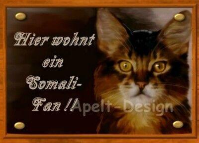 Somali-katze (Somali   / Katze  /  Schild  / Bild )