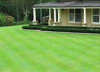 Year Round Outdoor Property Maintenance - INSURED