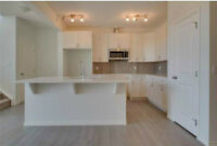 $399,900 Limited Time Offer: BRAND NEW 1687 SQ FT TRICO HOME