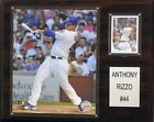 Anthony Rizzo MLB Plaques