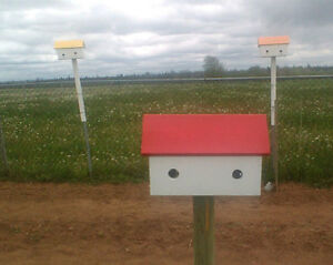 double bird houses