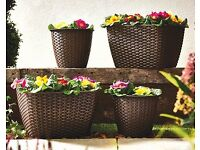 Set of 4 Rattan Basket Planters