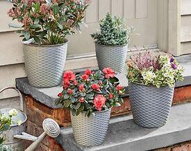 Four grey planter