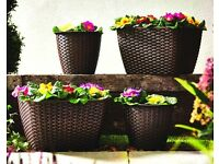 NEW.. Set Of 4 Rattan Planters