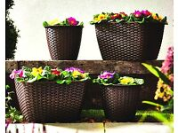4 x Rattan Style planters