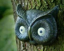Glow in the dark tree owl