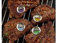 Burger & Steak Thermometer Set (NEW)