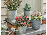 Set Of 4 Round Grey Planters