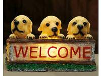 Solar welcome puppy