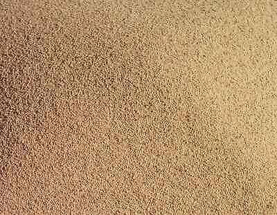 Sand Blasting Blaster Walnut Shell Cabinet Tumbler  Grit 1kg 03-06 mm 25/52 Mesh