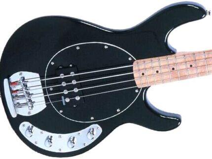 Bass guitar  Darwin CBD Darwin City Preview