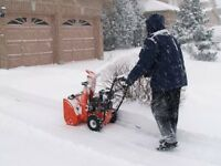 Wortley area snow removal