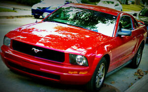 2005 Ford Mustang Coupe (2 door) Excellent Condition!!!