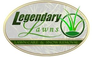 NW Professional Lawn Care, Core Aeration &a Snow Removal ❄️ London Ontario image 6
