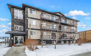 Gorgeous one bedroom condo, one block from NAIT