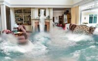 WATER/FLOOD CLEANUP - EMERGENCY SERVICES 24/7