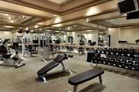 Fitness Business for Sale