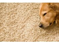 Carpet Cleaning, with offers!