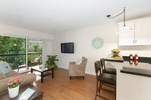 Kitsilano - 1 Bedroom, Fully Furnished - $1700 for first month
