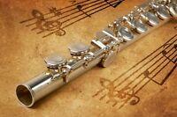 Summer flute lessons