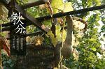 Kenshzheng