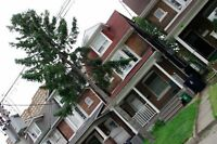 $650 Room Available in large 3 bdrm House - All inclusive!!!!