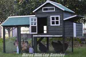 ♥♥♥ The Katie Lage Chicken Coop ♥♥♥ On Sale Now ♥♥♥ Londonderry Penrith Area Preview