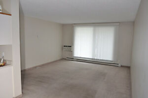 1 Bed Room At Donald Available For Rent (First Month Free)